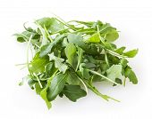 Heap Of Fresh Arugula Leaves Isolated On White Background poster