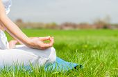 Meditation. Woman Is Meditating Sitting In Lotus Pose On Grass At The Park. Girl Doing Ardha Padmasa poster