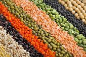stock photo of legume  - colorful  striped rows of dry lentils - JPG