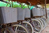 Close Up Of Bicycles Parking At Cultural Park Ready For Service - Natural And Cultural Tour Concepts poster
