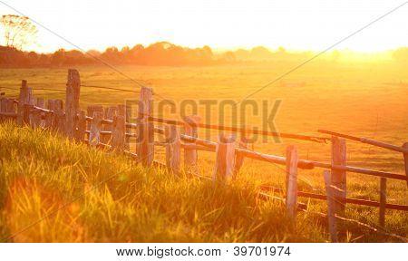 Sunset Over Cattle Crush