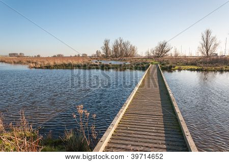 Narrow Wooden Gangway Over A Natural Pond