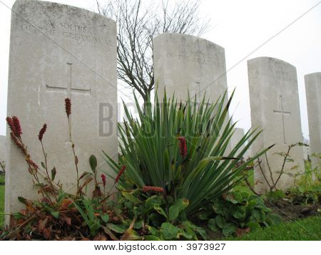 Gravestones From First World War