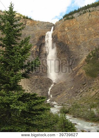Takakkaw Falls and Fir