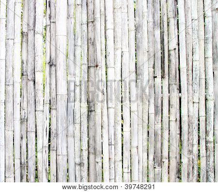 White Bamboo Wall Background