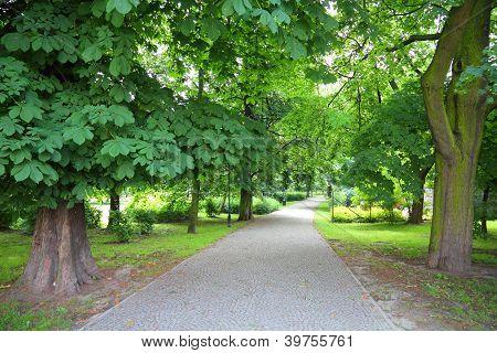 Kalisz Park