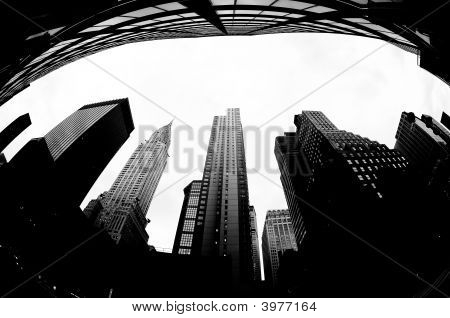 New York City Fisheye B/W