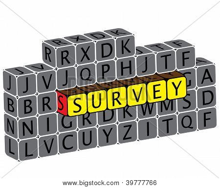 Illustration Of Word Survey Using Alphabet Cubes. The Graphic Can Represent Various Online Questionn