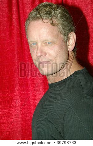 UNIVERSAL CITY - DEC. 4: Chriss Anglin arrives at publicist Mike Arnoldi's birthday celebration & Britticares Toy Drive for Children's Hospital on Dec. 4, 2012 in Universal City, CA.