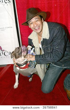 UNIVERSAL CITY - DEC. 4:Liam Stone & Bella the Movie Dog arrive at publicist Mike Arnoldi's birthday celebration &  Britticares Toy Drive for Children's Hospital on Dec. 4, 2012 in Universal City, CA.