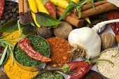 stock photo of indian food  - Various colorful spices and herbs used for seasoning indian food - JPG
