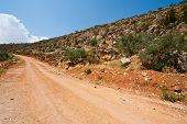 stock photo of samaria  - Dirt Road on the Slopes of the Mountains of Samaria Israel - JPG