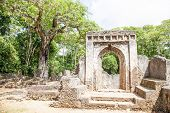 picture of watamu  - Gede ruins in Kenya are the remains of a Swahili town typical of most towns along the East African Coast - JPG