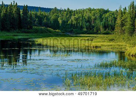 Cascade River, Superior National Forest