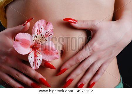Flower In Hands