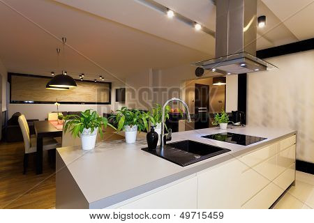 Urban Apartment - Kitchen Counter