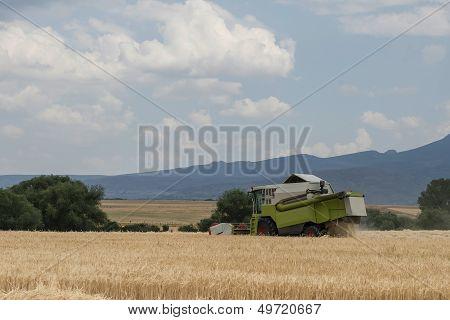 Combine Harvester Working In A Cereal Crop.