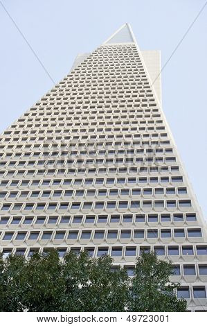 Low angle view of the Transamerica Pyramid San Francisco designed by William Pereira