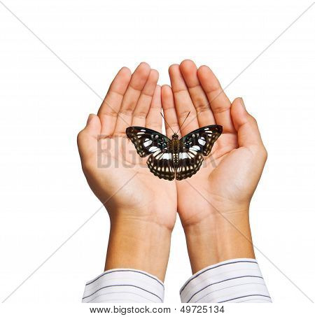 Take Care Butterfly By Hand On White Background With Clippping Path