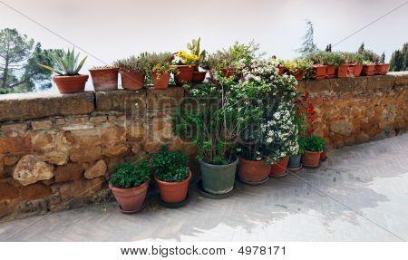 Walls Of Pienza, Tuscany, Italy