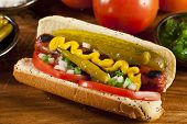 foto of wiener dog  - Chicago Style Hot Dog with Mustard Pickle Tomato Relish and Onion - JPG