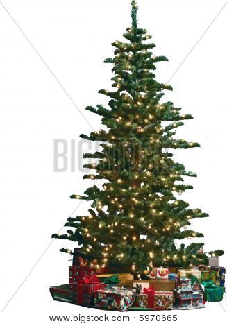 The Christmas tree is a decorated artificial or living tree.ai