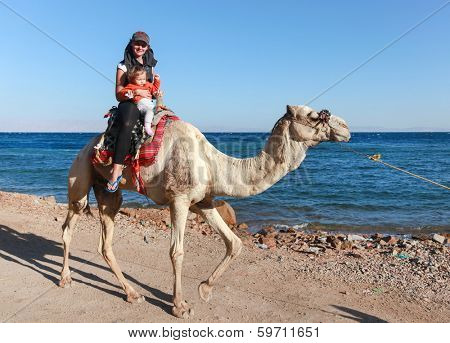 DAHAB, EGYPT - JANUARY 30, 2011: Female tourist with kid rides a  camel on beach during safari. Local bedouins rely on tourism to make a living in the harsh desert.
