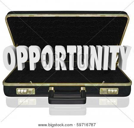 Opportunity Open Briefcase Sales Job Offer Proposal