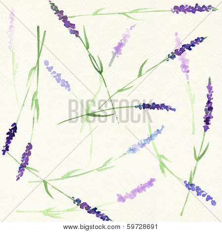 Watercolor seamless lavender pattern