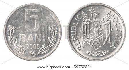 5 Moldovan Bani Coin