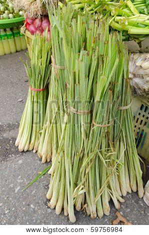 Fresh Lemongrass  Sale In Fresh Market