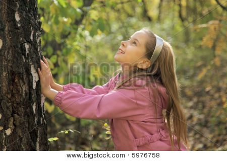The little girl and the big tree