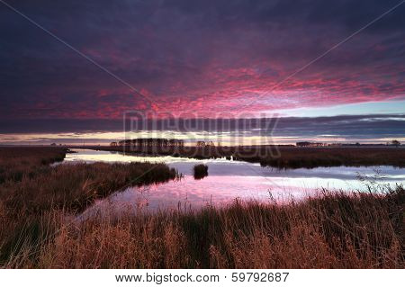 Dramatic Purple Sunrise Over River