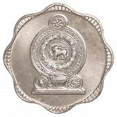 pic of sinhala  - 10 Sri Lankan rupee cents coin isolated on white background - JPG