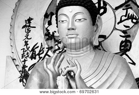 Buddha Statue, Ladakh India