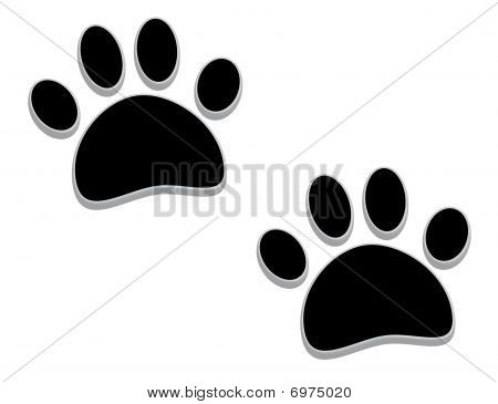 Tridimensional Paw Prints