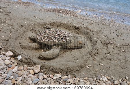Sea Turtle Sandy Beach