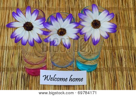 Welcome home note and Senecio flowers