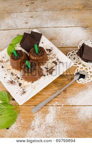 Chocolate Pops