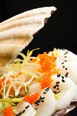 foto of scallop-shell  - scallops presented on a scallop shell - JPG