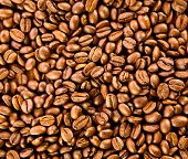 foto of coffee crop  - Brown coffee background texture - JPG