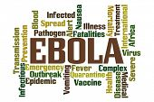 stock photo of vomiting  - Ebola Word Cloud on White Background - JPG