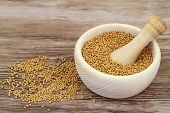 pic of mustard seeds  - Mustard seeds in wooden mortar and mustard in white bowl with copy space [[** Note: Shallow depth of field ** Note: Visible grain at 100%, best at smaller sizes - JPG