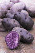 picture of solanum tuberosum  - Vitelotte blue-violet potato (Solanum ajanhuiri Vitelotte Noir), close up ** Note: Shallow depth of field - JPG