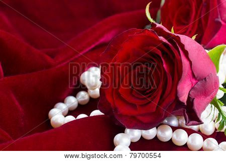 red rose and pearls on velvet