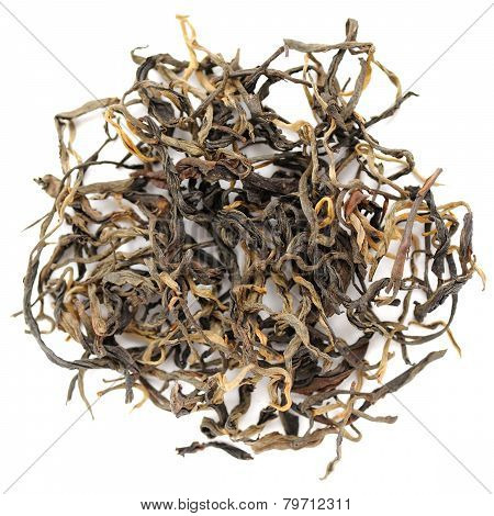 Mensong Menghai Red Yunnan Chinese Tea Crop Closeup Isolated