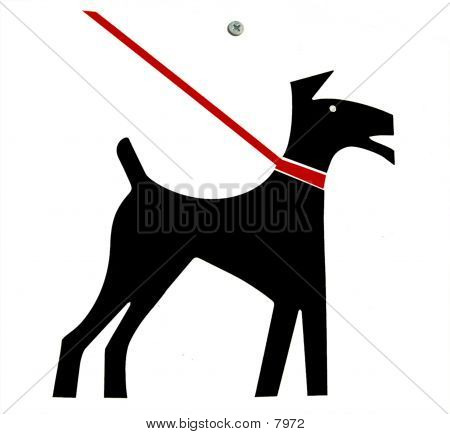 Leash Law poster