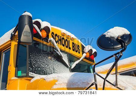 School buses after a fresh snowfall