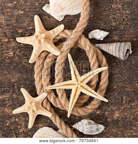 starfish, seashells and rope