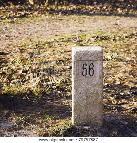 Stone Milestone On A Forest Road